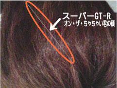 スーパーGT-Rとちゃちゃい君の髪の毛の色